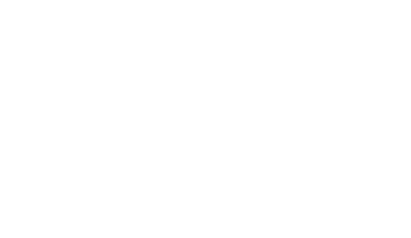 blindlogo svg-01